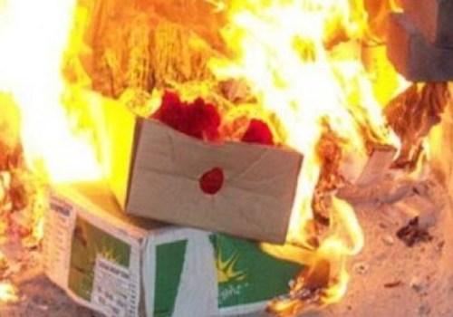 В Крыму нашли сыр из Европы и сожгли его