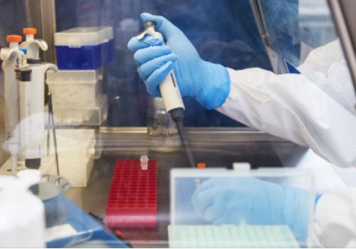 282 случая коронавируса за сутки выявили в Крыму