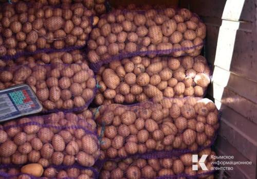 В Крыму снова дорожает картофель