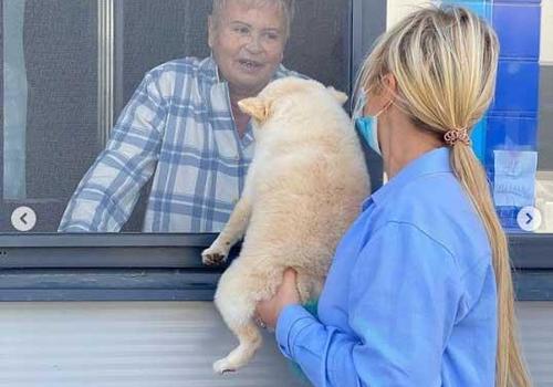 Мать телеведущей Даны Борисовой лечат от коронавируса в Феодосии