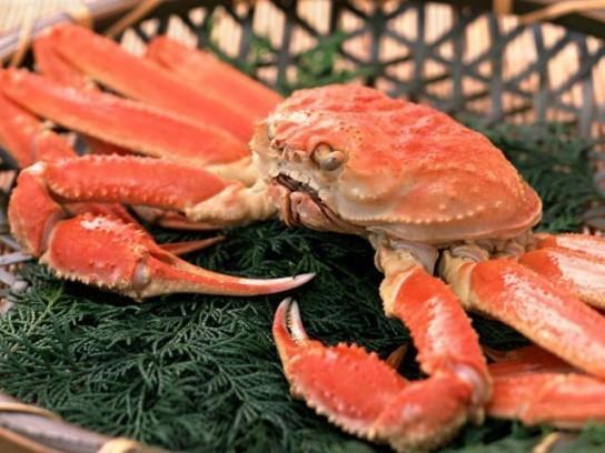 Раки, морепродукты с доставкой в Севастополе – магазин «Морское царство»: качественная продукция!