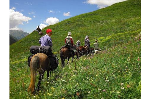 Где в Крыму предлагают конные прогулки